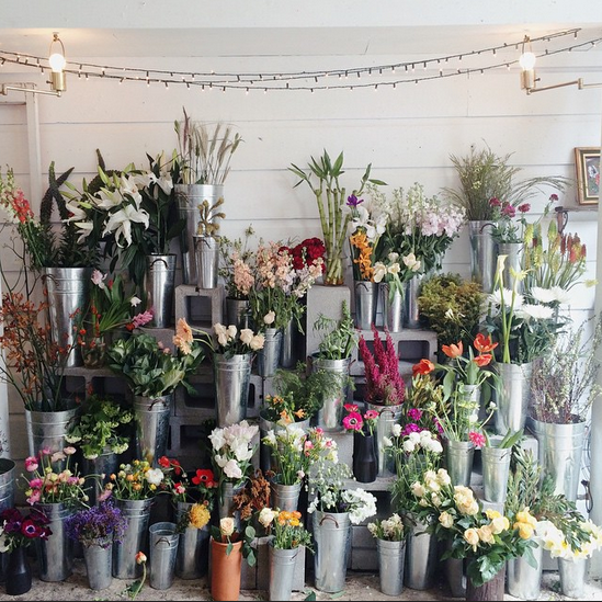 Ampersand Flower Shop